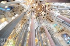 Die Säulen sind einem Wald nachempfunden und bilden ein helles Laubdach aus Palmblättern