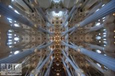 Die Gewölbe der Basilika entstehen aus baumähnlichen Säulen, die sich zu einem Dach aus Palmblätter formen