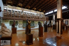 Library of the Museum