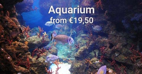 Tickets for the Aquarium Barcelona, one of the largest in Europe