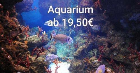 Tickets für das Aquarium Barcelona, eines der größten in Europa