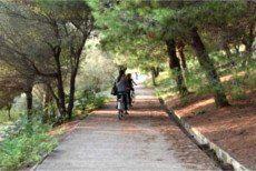 Deutsch- und Englischsprachige Fahrradtouren