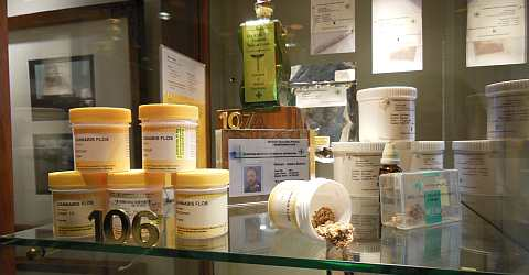 Application of marijuana in medicine