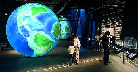 Museu Blau - Museum für Naturwissenschaften