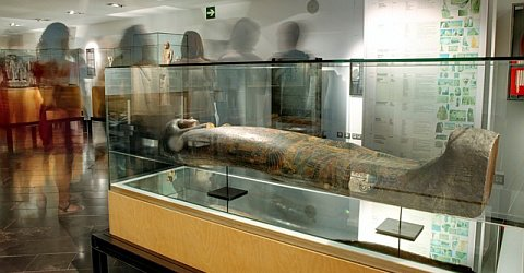 Exciting Egyptian history at the time of the Pharaohs in the Museu de Egipci