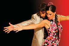 Palacio del Flamenco - elaborate show and highclass dinner