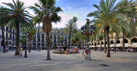 The Plaça Reial is a popular meeting point in the gothic district
