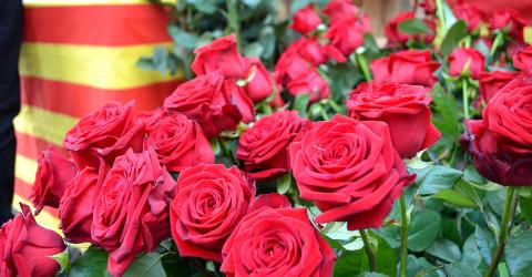 Sant Jordi - Tag des Buches und der Rose