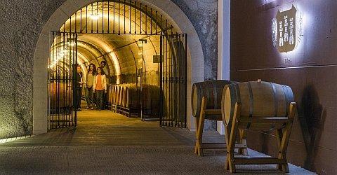 Weingut Torres in Penedés