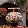 Feiertag: Fronleichnam - L'ou com balla - Das tanzende Ei